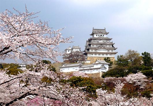 姫路城の画像 p1_11